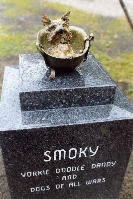 Smoky The War Dog WWII Hero | Australia RSPCA Purple Cross Award ...